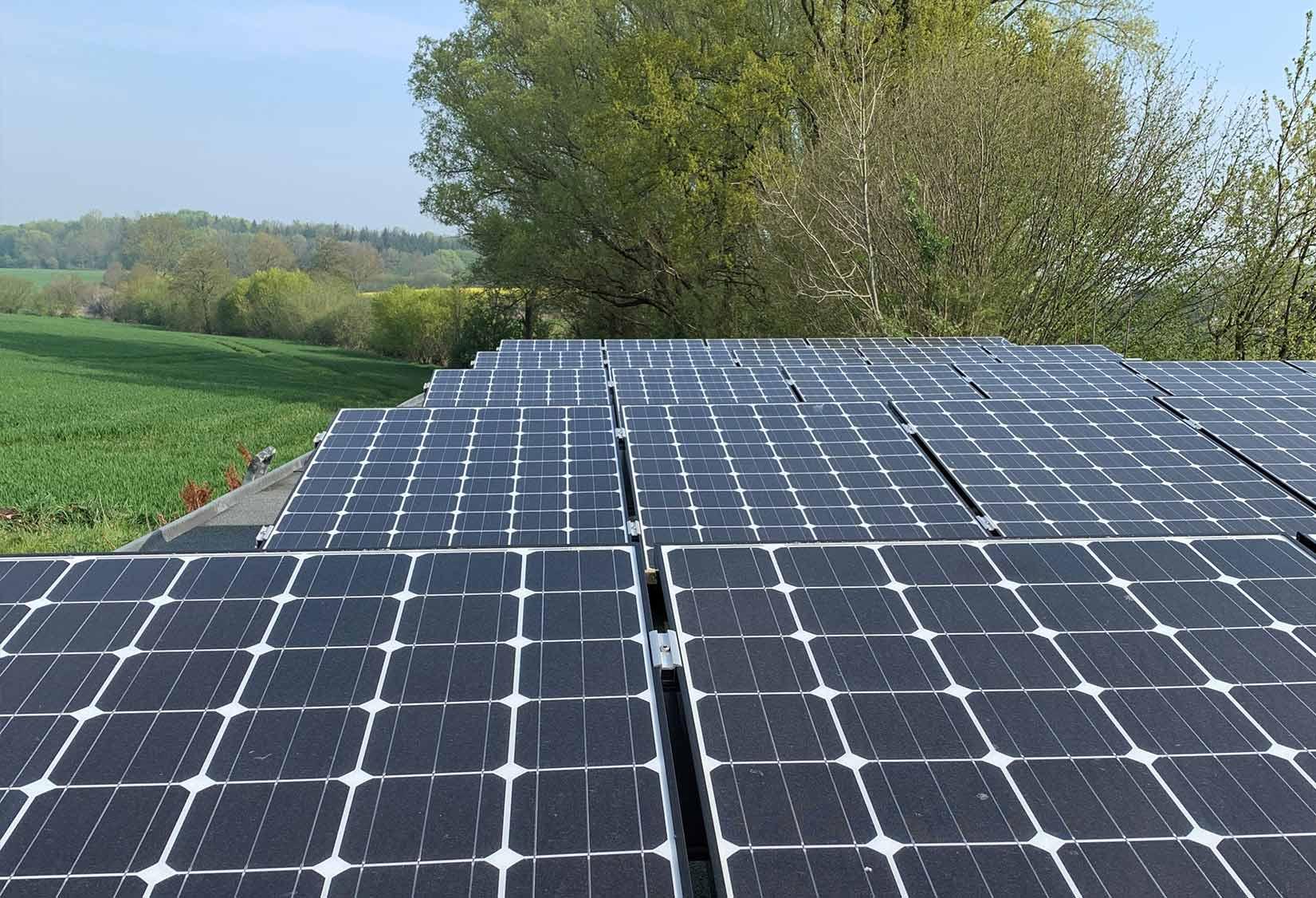 Erneuerbare energien solarzellen baum hamburg
